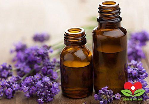 Khám phá công dụng chữa bệnh tuyệt vời từ hoa oải hương