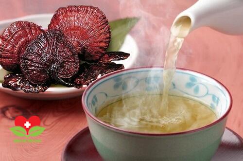 Cách sử dụng nấm lim xanh đem lại hiệu quả điều trị bệnh cao nhất
